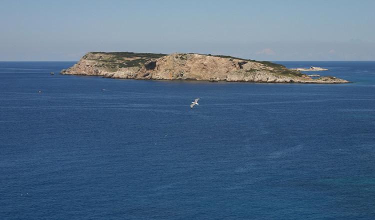 Isola di Cretaccio isole Tremiti
