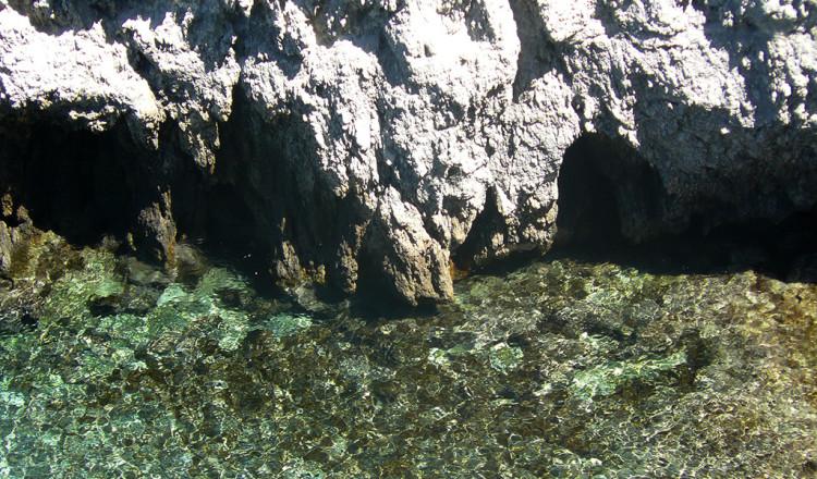 Grotte calcaree nell'isola di San Domino