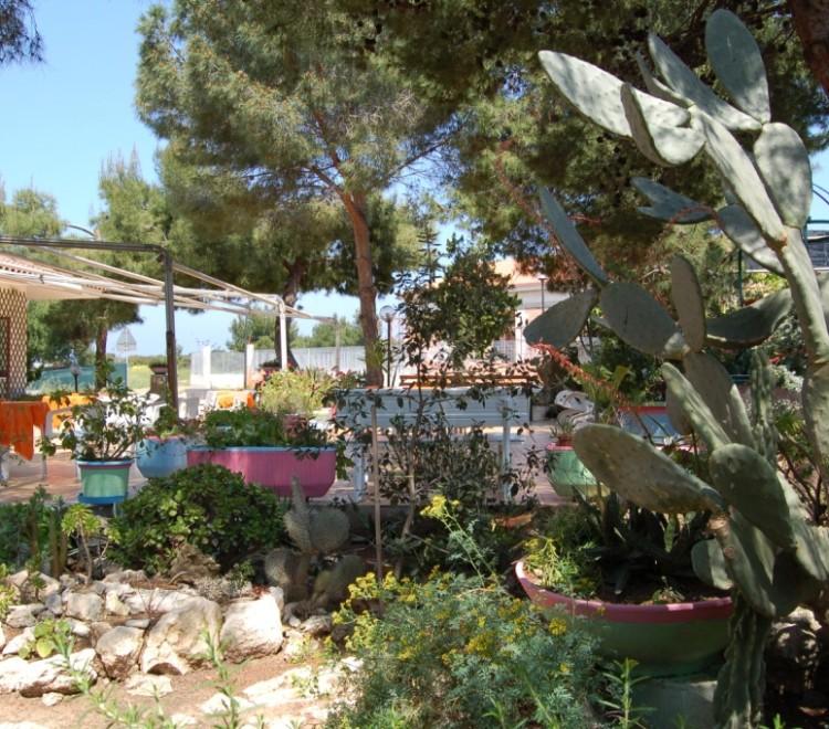 giardino dell'albergo